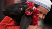 festa del sacrificio Eid al-Adha