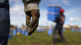 stranieri lavoro in nero permesso di soggiorno